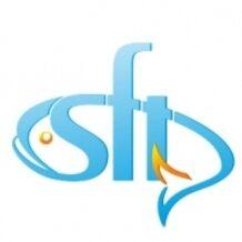 Спиннинги морские SFT (Тайвань)