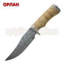 Нож Орлан кованый, дамасcкая сталь, береста, литьё