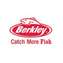 Berkley (США)